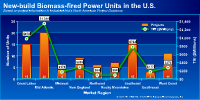New-build U.S. biomass-fired power units